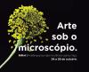 Mostra Arte sob o microscópio